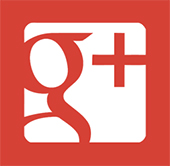 icon-google plus